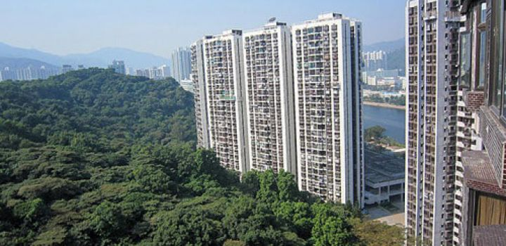HK Gov't looks to increase supply of apartments
