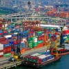 Think Tank proposes moving Kwai Chung Container Terminals