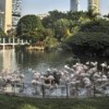 Underground park proposed for Kowloon