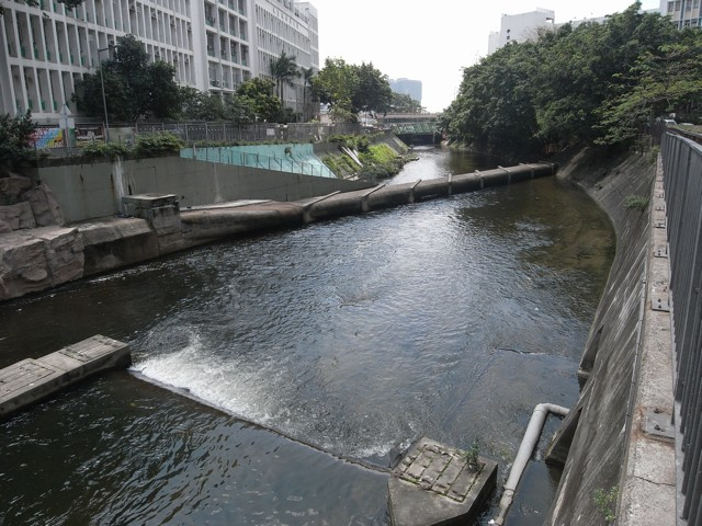 The section of Kai Tak Nullah from Tung Kwong Road to Prince Edward Road East is the latest section to be revamped by Drainage Services Department into a green river running through the urban area in Kowloon City. (Danny Chung)