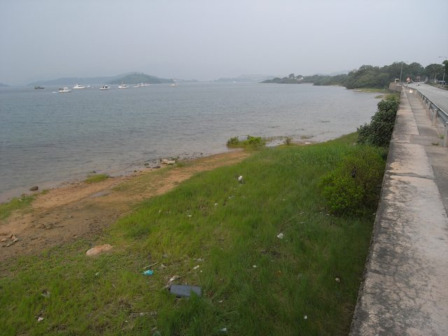 The government is pressing ahead with construction of a bathing beach at Lung Mei in Tai Po although nothing seems to have been done on site so far   (Danny Chung)