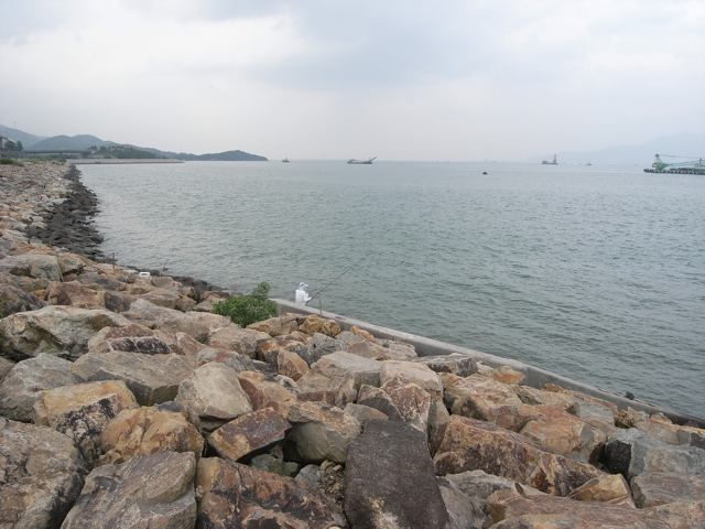 The government is proposing a study on reclamation at Sunny Bay in North Lantau  (Danny Chung)